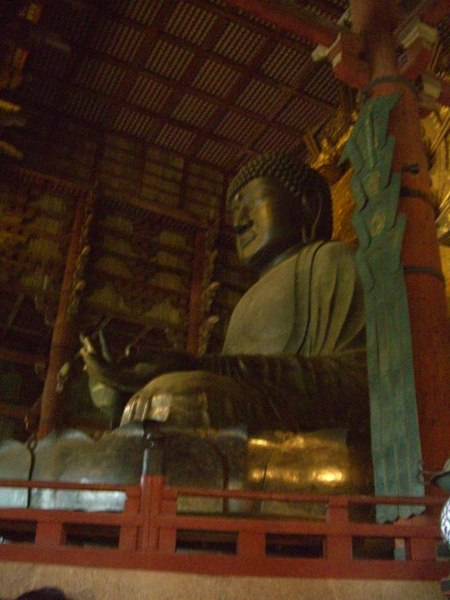 奈良の大仏様(大仏の食いにげ)2010年7月3日、マルコ氏撮影