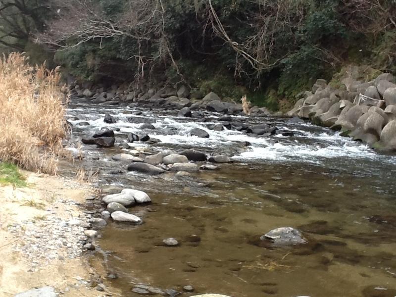 菊池の迫間川の媛女渕、媛女淵(紅子2012年1月25日撮影)
