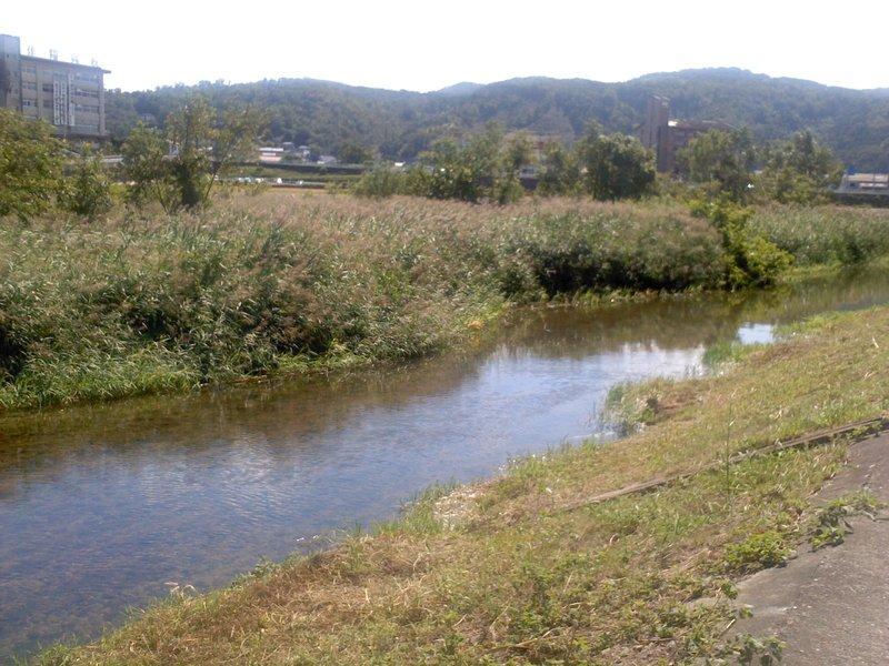 津山城近くの吉井川(2012年9月27日撮影、沢上長吉)