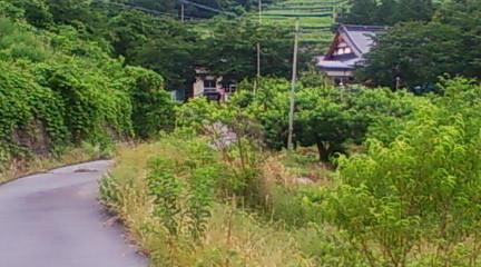おそらくこの道が蟹追坂だと思います。奥に写っているのが長源寺。2010年6月23日のりくん撮影