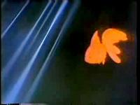 金魚のうた